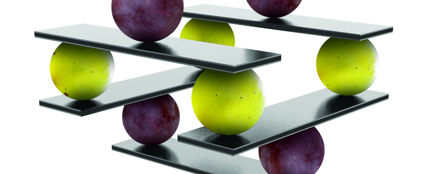 Nuovi strumenti a disposizione dell'enologo per l'equilibrio sensoriale del vino