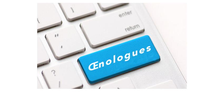Une grande enquête nationale sur le métier d'œnologue