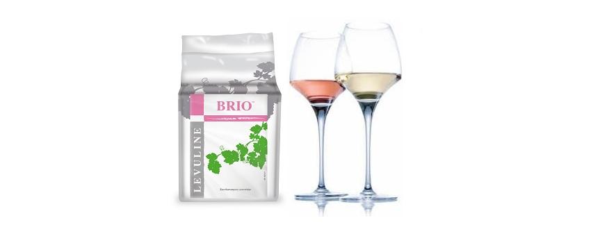 Fermentation alcoolique : des vins blancs et rosés nets et intenses, au fruité renforcé