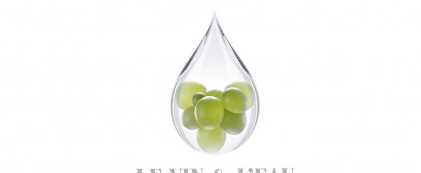 Le Vin et l'Eau : les conférences du 56e Congrès des œnologues dans la revue française d'œnologie