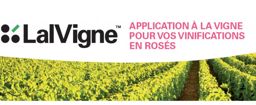 La Gamme LalVigne, applications à la vigne pour produire des vins rosés de qualité
