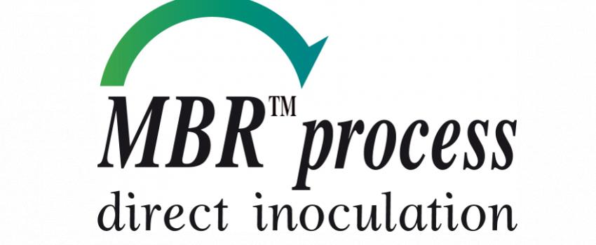 Les bactéries œnologiques sélectionnées MBR™ : performance et adaptabilité pour des FML réalisées avec succès