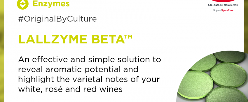 Win the treasure hunt for aromas in your wines with LALLZYME BETA™!