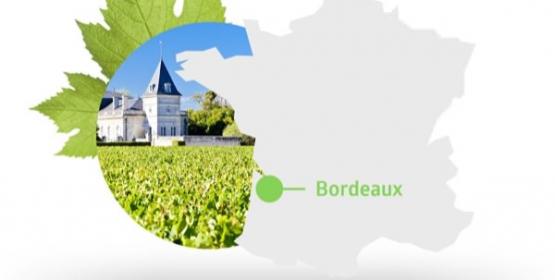 CONFÉRENCE DU MILLÉSIME Bordeaux 2016