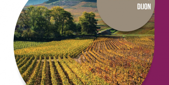 TERROIR AND VINEYARD MANAGEMENT