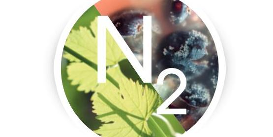 5 à 7 Technique : La nutrition de la vigne au vin