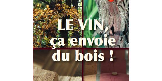 17e Matinée des oenologues de Bordeaux : LE VIN, ça envoie du bois !