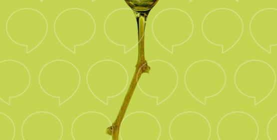 L'odyssée d'une bulle de champagne, de la bouteille à la flûte