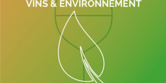 Cépages résistants : quelles conditions pour un déploiement en Nouvelle-Aquitaine ?