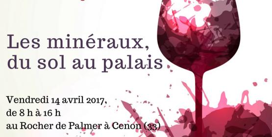 Les minéraux, du sol au palais - 15e matinée des œnologues de Bordeaux
