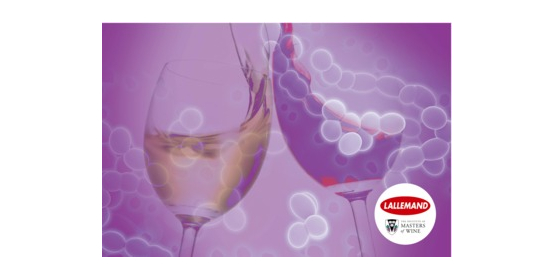 State of flux: microbiological solutions to making wine in an uncertain climate