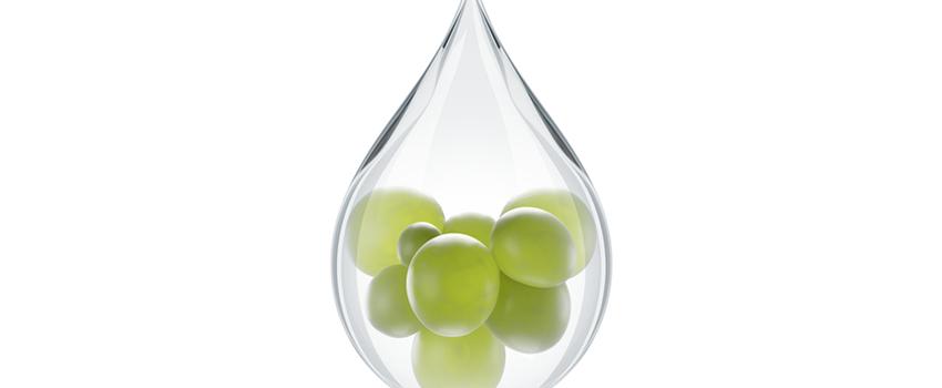 Le vin et l'eau : 56ème Congrès National des Œnologues de France