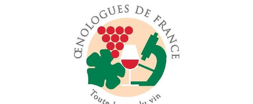 Le soufre de la vigne au vin : atouts et limites