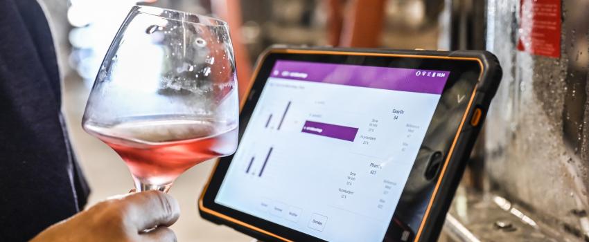 Comment optimiser la qualité des vins pour moins de 4000 euros ?