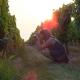 constance olivier